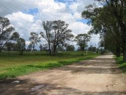 Ejido de San Miguel Tocuila
