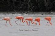 25.12.14-Cancun-FranGomez6